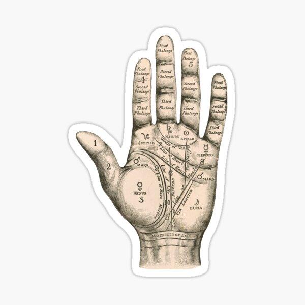 Palmistry Sticker