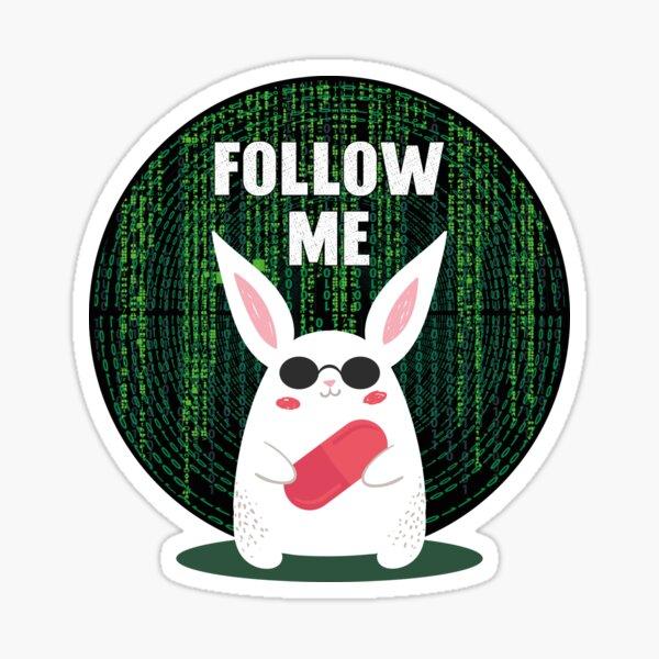 Matrix...Follow me Sticker