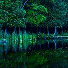 Lac Sainte Marie II by Valerie Rosen