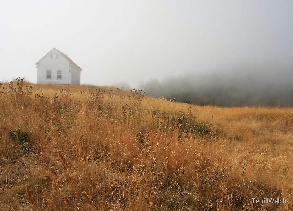 August mist building field by TerrillWelch