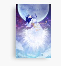 The Robe of Feathers Metal Print