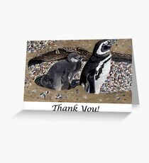 Looking Out For You - Mother & Baby Penguins Greeting Card Greeting Card