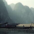 Houseboat on River Li, Guilin, China by Bev Pascoe
