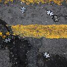 Jigsaw Pieces by Ant101