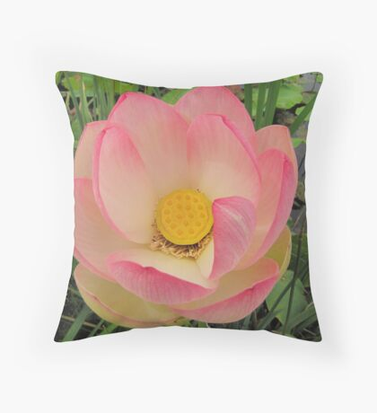 Beauty from porcelain Throw Pillow