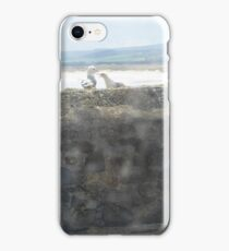 Looking through the windowpane iPhone Case/Skin