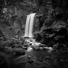 Otway waterfall - black and white presentation by Stephen Colquitt