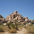 Joshua Tree by Bearie23