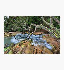 Whiritoa blow hole back wash Photographic Print