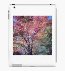 Spring Tree Scene iPad Case/Skin