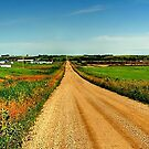 Endless Road by Larry Trupp