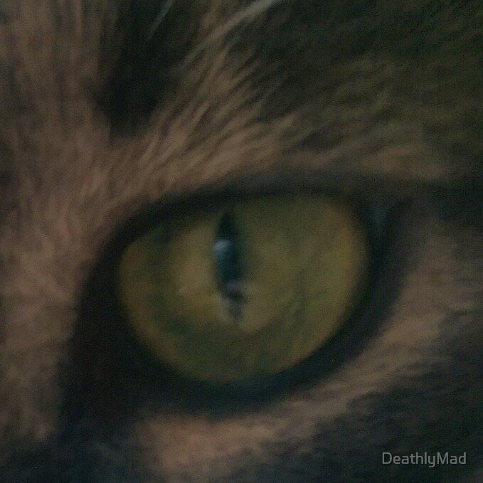 Cat Eye by DeathlyMad