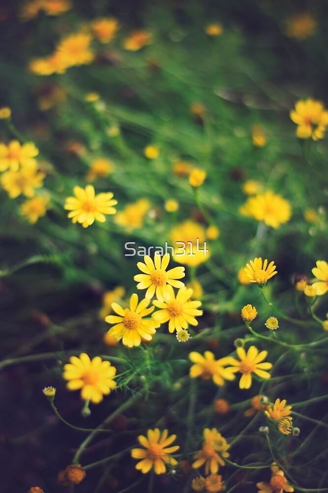 Hope Grows by Sarah Reuter