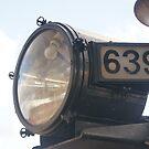 Reflection light 639 by trishringe