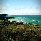 Anglesea Main Beach by trishringe