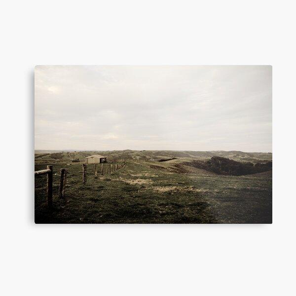 Sheep Shed - Fleurieu Peninsula, South Australia Metal Print