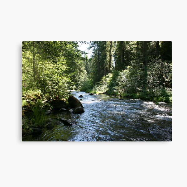 Fish Creek Canvas Print