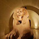 Sphinx by sezice