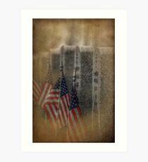 patriots pallet Art Print