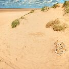 Sand Castles in the Dunes by John Hare