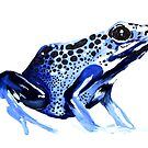 Poison Dart Frogs by wendish
