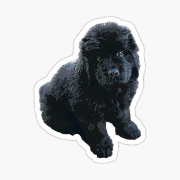Newfoundland Puppy Dog Sticker