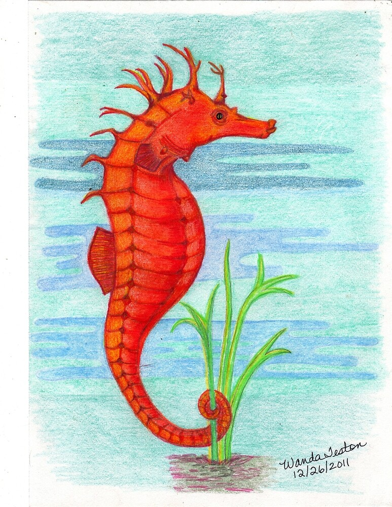 Orange Seahorse, Hippocampus by Wanda Teston
