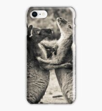 Fighting Kangaroo's, Perth hill's, Western Australia iPhone Case/Skin