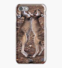 kangaroo's fighting, Perth hill's, Western Australia iPhone Case/Skin