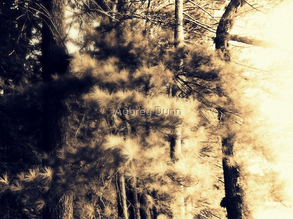Ghost Fingers by Aubrey Dunn