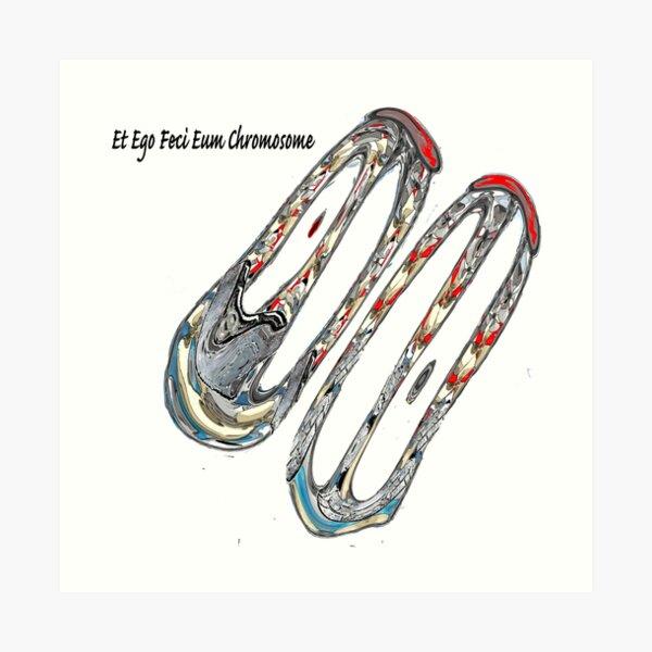Et Ego Feci Eum Chromosome Art Print