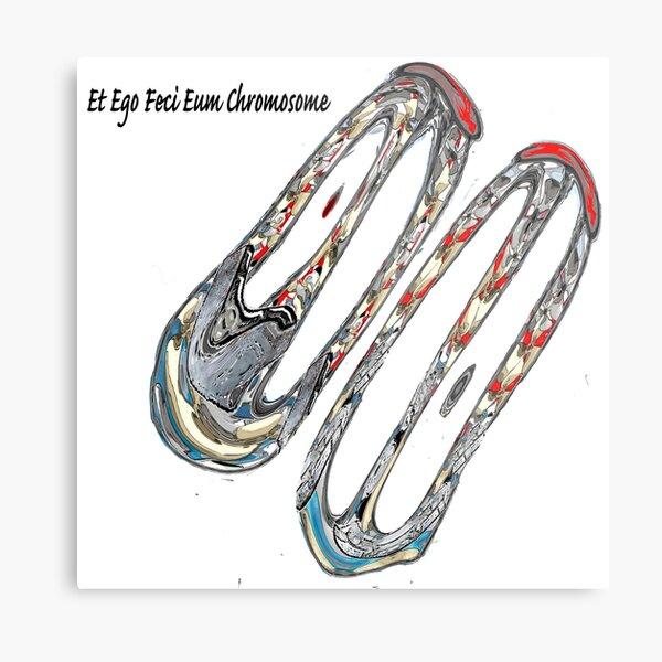 Et Ego Feci Eum Chromosome Metal Print