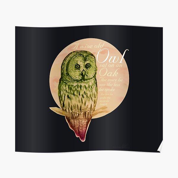 Wise Owl (by marthalaufej tintadesign) Poster
