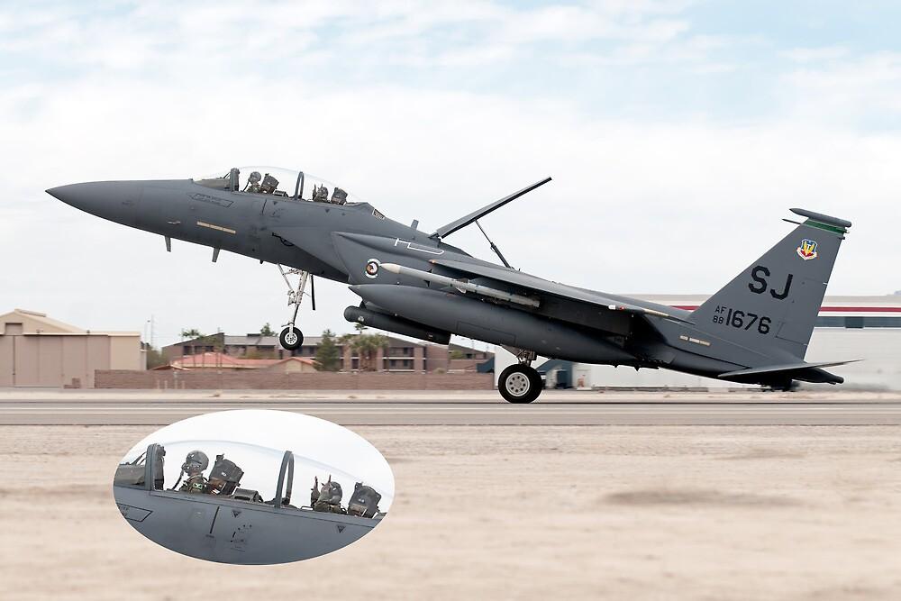 "The ""Strike"" Eagle Has Landed by gfydad"