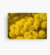 Puffs Of Yellow Leinwanddruck
