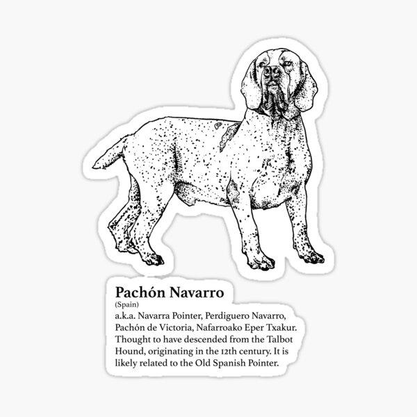 Pachón Navarro Sticker