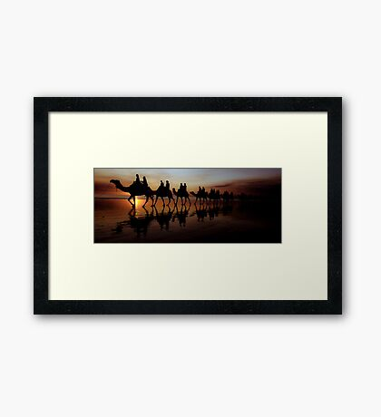 Camels at Sunset Framed Print