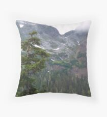August in the Highlands Throw Pillow