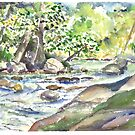 Waterville - Creek Scene 2 by mleboeuf