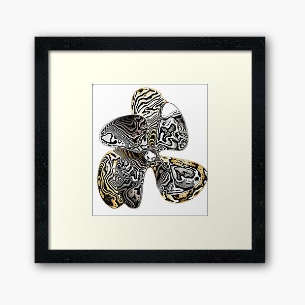 Zebra Prop Flower  Framed Art Print