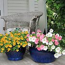 The Front Porch by Patricia127