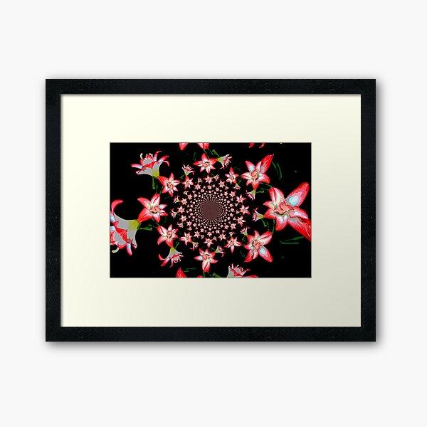Lillies Forever Framed Art Print