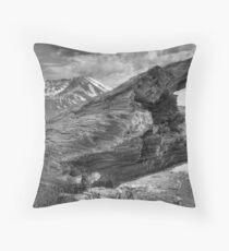 Blown Away (BW) Throw Pillow