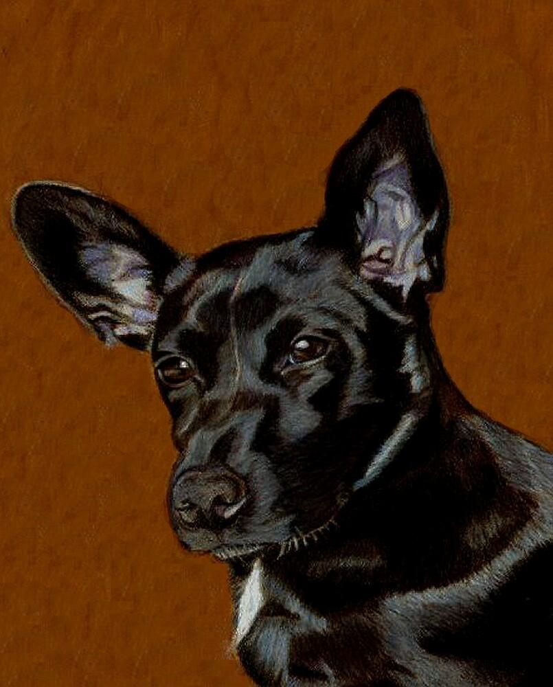 I Hear Ya! Portrait of a Little Black Dog. by Patricia Barmatz