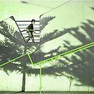 Baum-Wipfel-Pfad by emilys