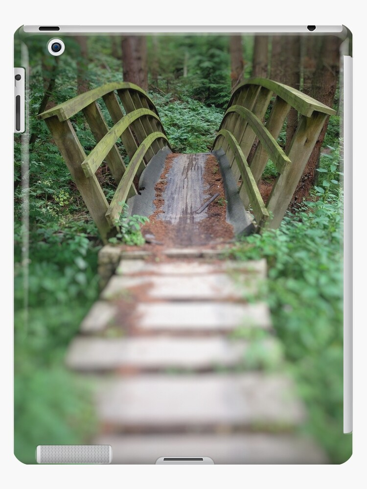 Forest Bridge by Tomliw