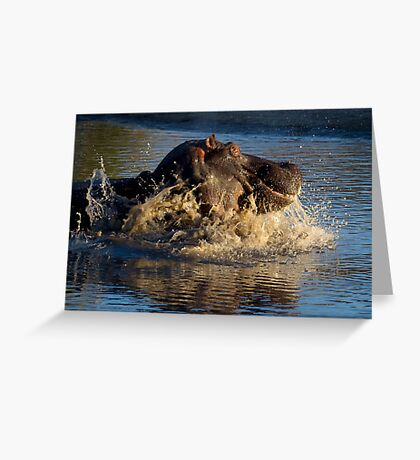 Unhappy Hippo Greeting Card