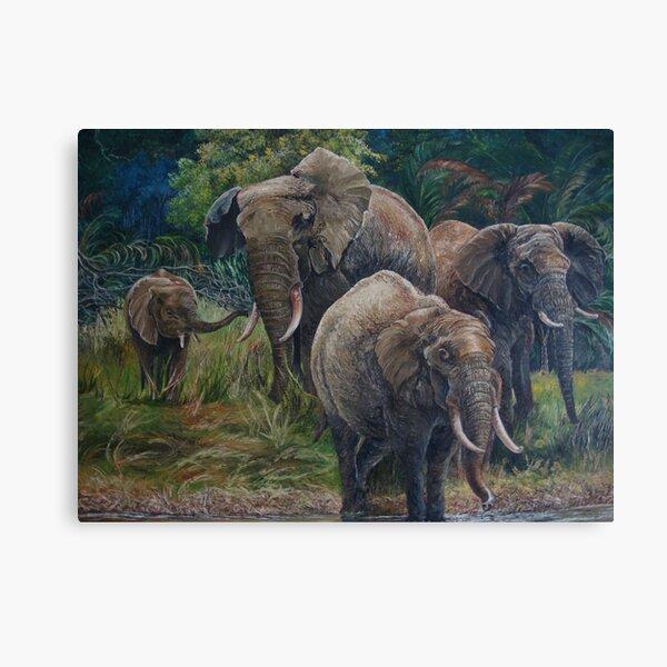 Elephants taking a rest Canvas Print