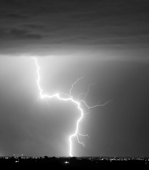 C2G Lightning Strike in Black and White by Bo Insogna