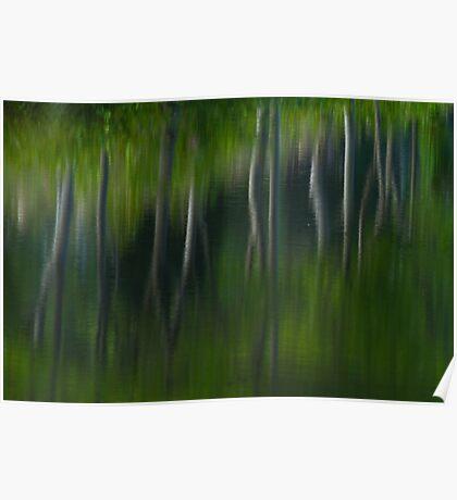 Summer Trees Reflection Impressisim Poster